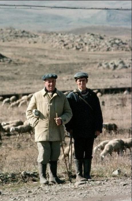 Пара пастухов, присматривающих за беспокойной отарой пасущихся овец (Армения).