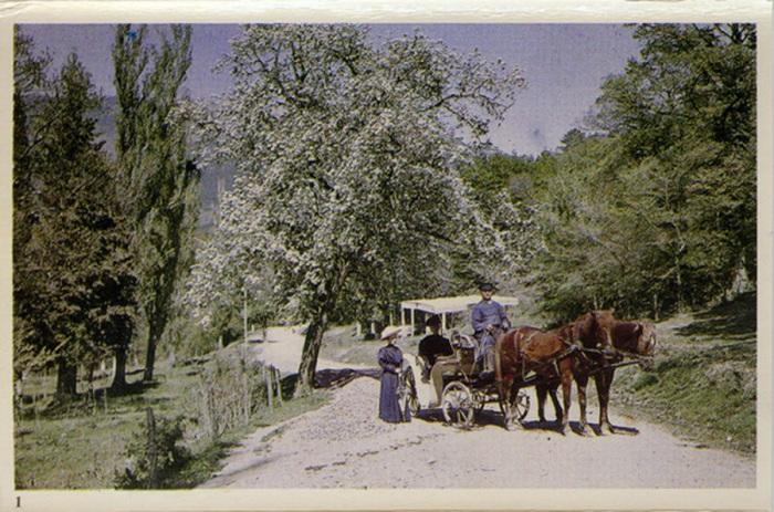 Крымская весна 1910 года.