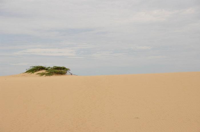 Самый северный мыс Южной Америки, на полуострове Гуахира.