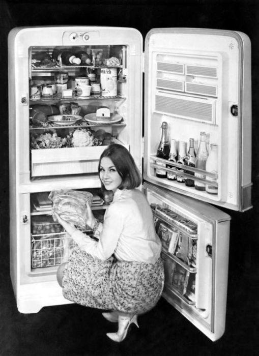 Образцовый холодильник