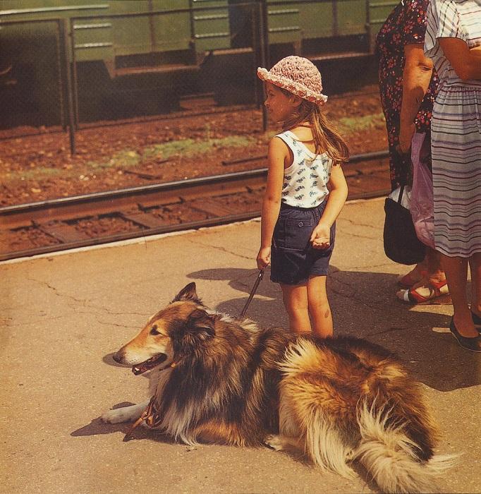 Девочка со своей собакой колли на перроне.