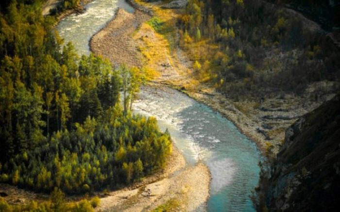 Горная река с извилистым руслом и быстрым течением. Там, где скалистое дно реки выходит на поверхность, в расщелинах породы встречаются целые россыпи драгоценного металла.