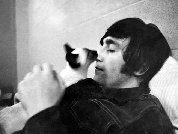 Британский рок-музыкант и один из основателей группы «The Beatles» с котенком сиамской породы в Токио (Япония).