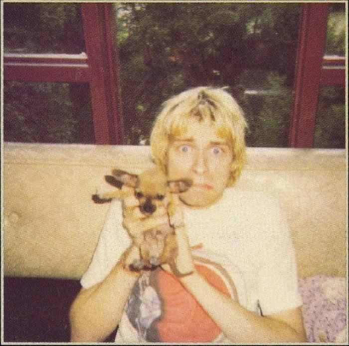 Вокалист и гитарист легендарной рок-группы «Nirvana» и его маленькая собачка породы чихуахуа.