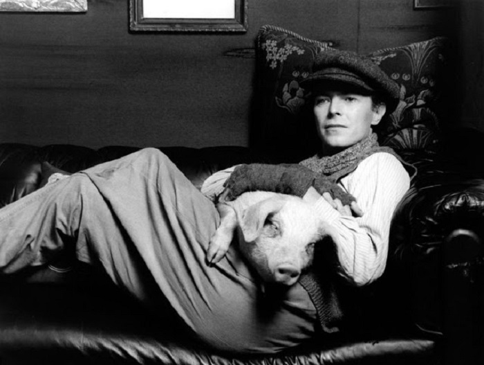 Британский рок-певец с «напарником» по съемкам в фильме «Прекрасный жиголо, бедный жиголо».