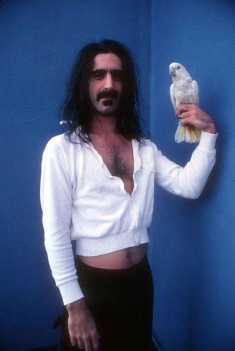 Американский композитор и певец позирует для портрета с попугаем какаду в 1979 году.