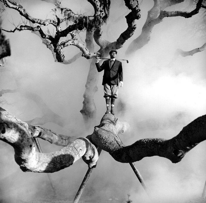 Гольф на дереве.