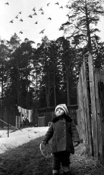 Зимние игры во дворе.