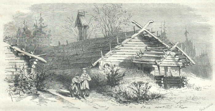 Деревянный срубный жилой дом в сельской лесистой местности.