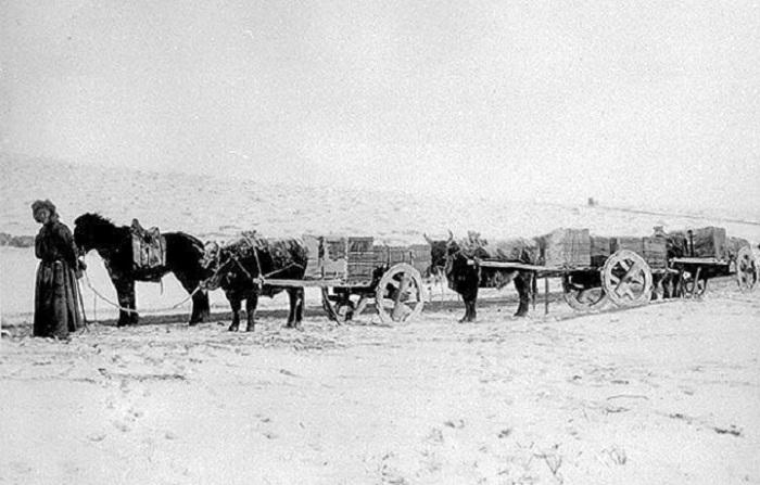 Такими обозами возили чай из Китая в Москву, 1900 год.