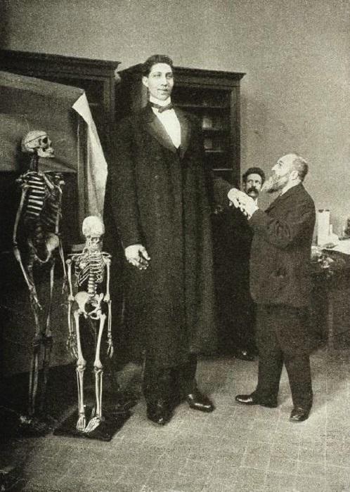 Самым высоким человеком, которого когда-нибудь видел свет, считается Федор Махнов, его рост был 285 сантиметров при весе около 182 кг.