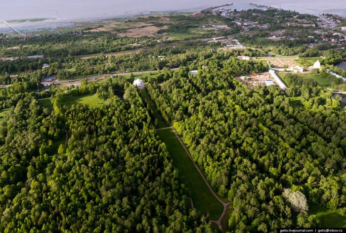 Великолепный луг длиной 532 метра, окруженный высокой хвоей.