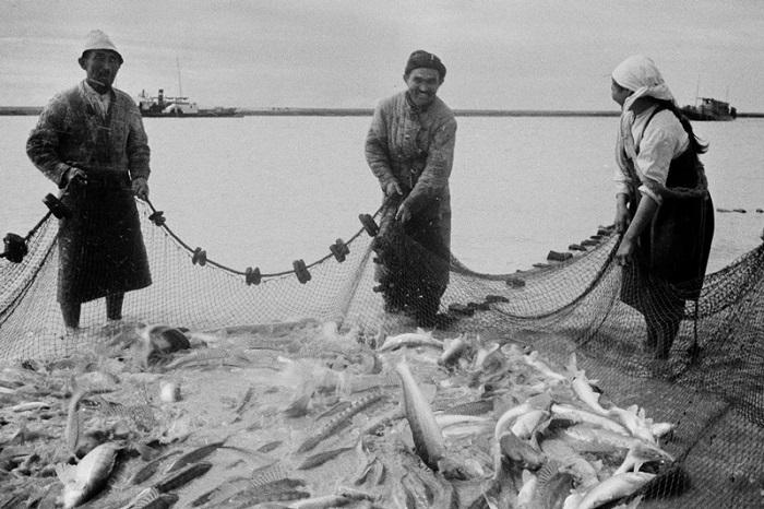 Лов рыбы на Каспии.