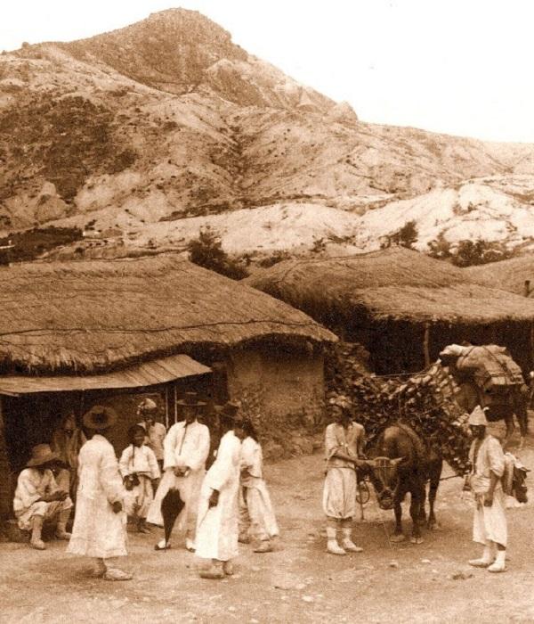 Перевозка товаров, 1905 год.
