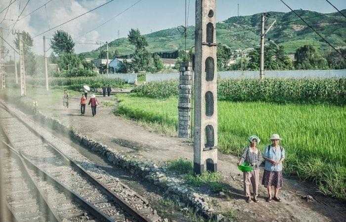 Сельское хозяйство является жизненно важной отраслью для жителей северокорейской республики.
