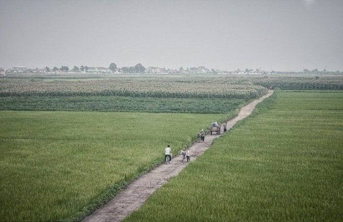 Жители пересекают местность в основном на велосипедах или гужевых повозках.