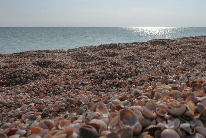 Белоснежный пляж из мелких ракушек.