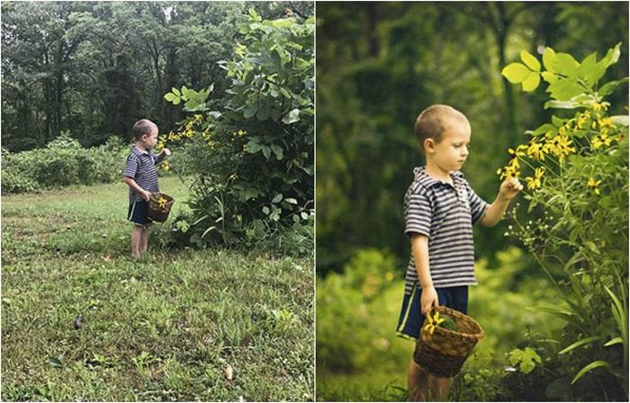Сравнительные снимки любителя и профессионального фотографа.