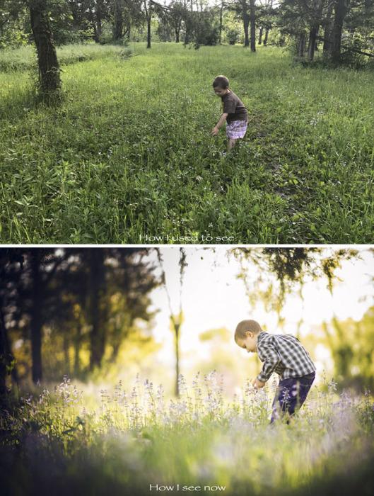 В данном сравнении любительская фотография выглядит тускло и непримечательно.