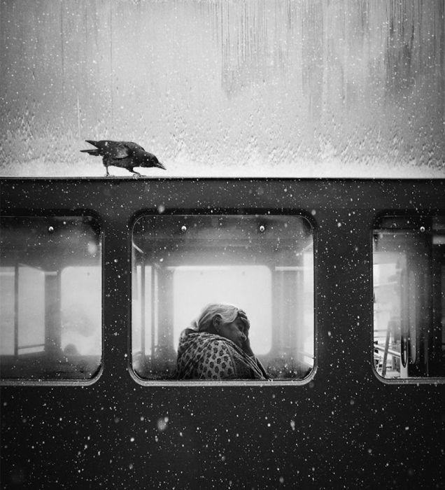 1-е место в категории «Монохром» присуждено британскому фотографу Джеку Сэвиджу (Jack Savage).