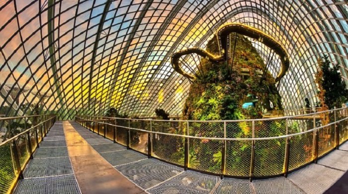 Самый огромный крытый водопад, огромные деревья и самая большая оранжерея.