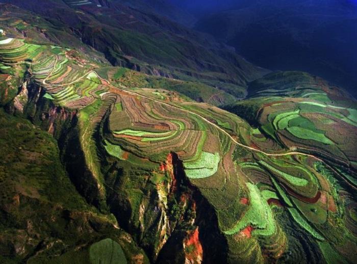 Рисовые террасы в Китае. Прекрасный кадр, хотя и без призового места.
