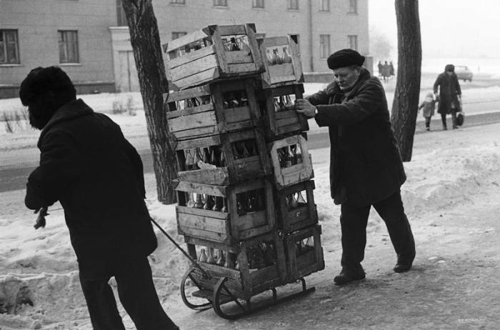 Мужчины на санках везут стеклотару. Новокузнецк, 1982 год.