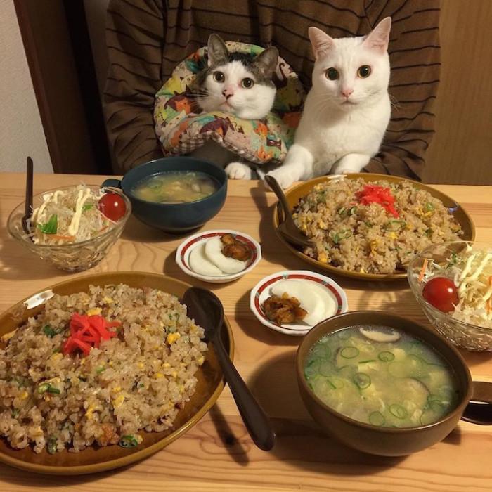 Глаза разбегаются от изобилия еды на столе.