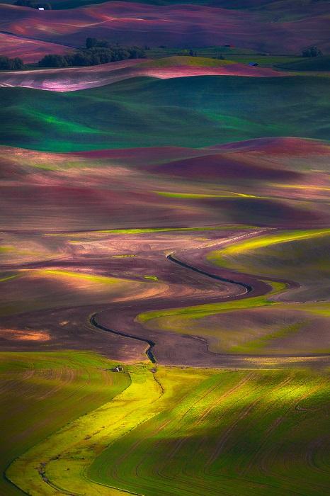 Изумрудные холмы расположены в американском штате Вашингтон, к югу от города Спокейн, сельскохозяйственный район Палуз.