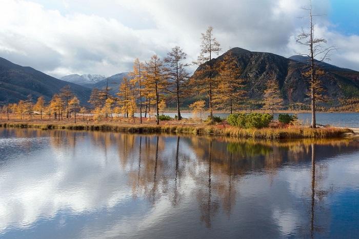 Очень красивый вид на горы и отражения золотых лиственниц в кристально чистой воде.