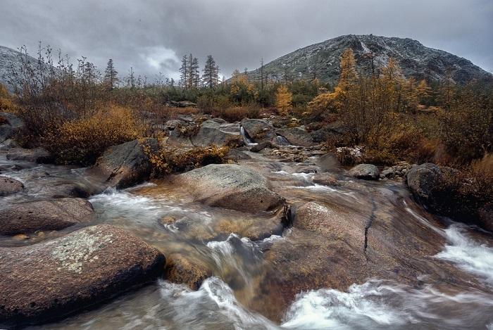 Водный поток среди камней, приглушенные золотые краски осени и затянутое серыми облаками небо.