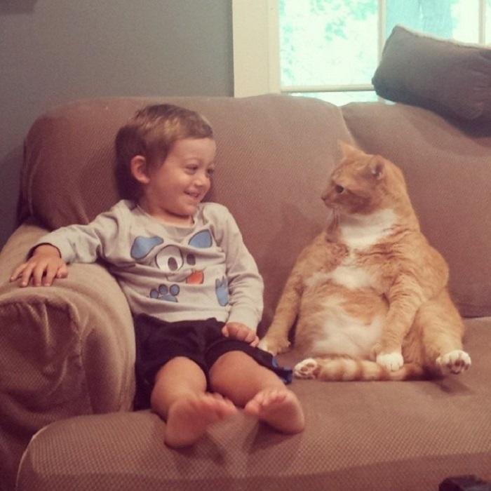 Пушистый кот Ларри стал для мальчика Авеля настоящим телохранителем и лучшей нянькой и теперь неустанно следует за ним везде и всюду.