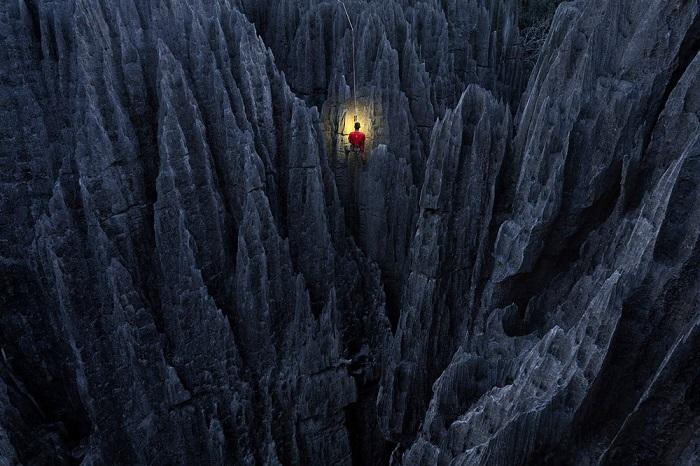 Особого упоминания в категории «Путешествия» удостоился голландский фотограф Марсель ван Остен (Marsel van Oosten) за снимок альпиниста на скалах Каменного Леса.
