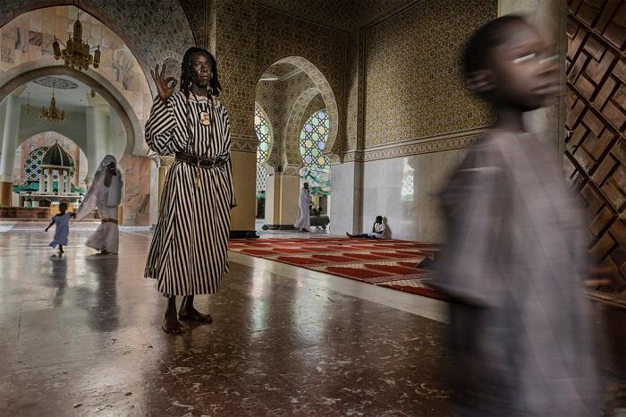 Абсолютным победителем конкурса стал итальянский фотограф Стефано Пенсотти (Stefano Pensotti), представивший портфолио из восьми снимков.
