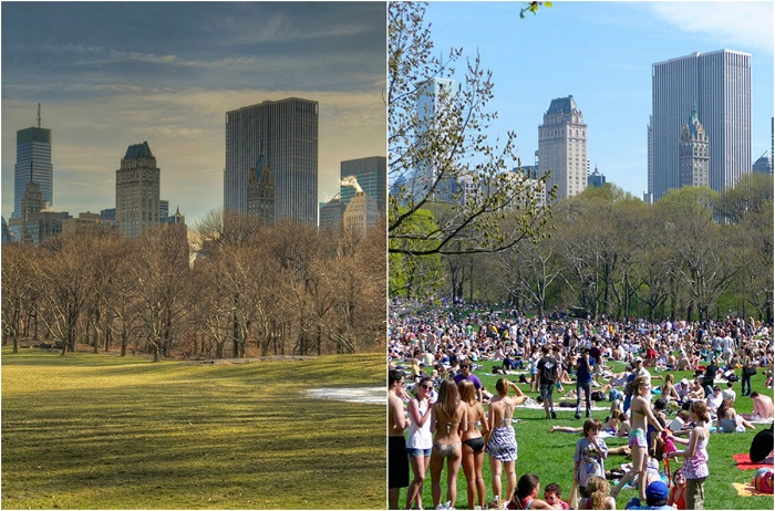 В летние месяцы, дарящий тень и прохладу, парк может показаться слишком многолюдным, зимой - зябким, для продолжительного созерцания.