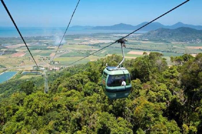 Для желающих полюбоваться красотой влажных тропических лесов с высоты Австралия предоставляет возможность прокатиться на самой длинной в мире подвесной канатной дороге протяженностью 7,5 километров, размещенной над Национальным парком Бэррон Гоурдж.