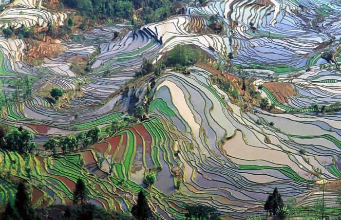 Удивительна красота и широта рисовых террас в провинции Юньнань, Китай.