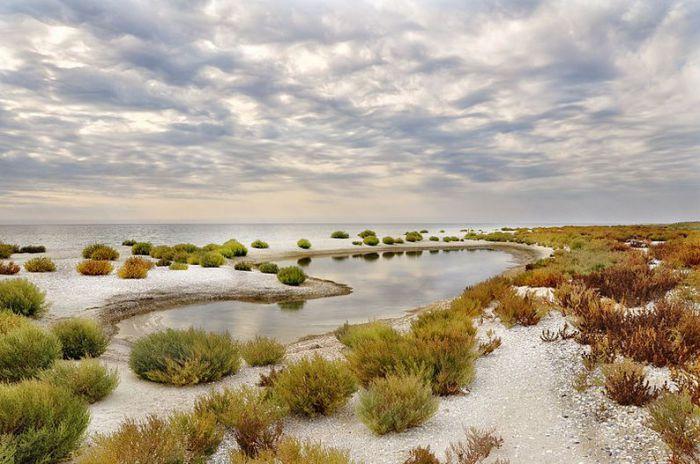 Песчаная коса в северо-западной части Кинбурнского полуострова между Днепровско-Бугским лиманом и Чёрным морем. Фотограф Анна Стрижекинь.