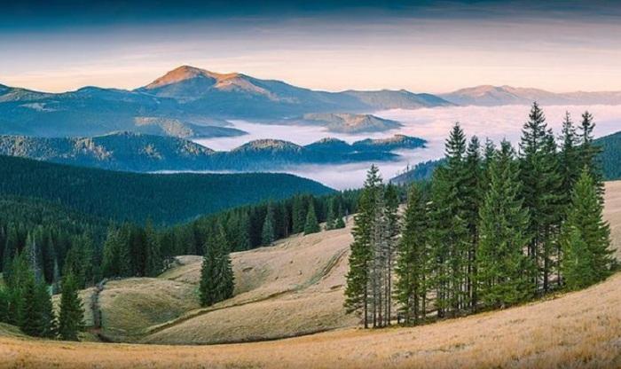 Завораживающий снимок биосферного заповедника. Фотограф Виталий Башкатов.