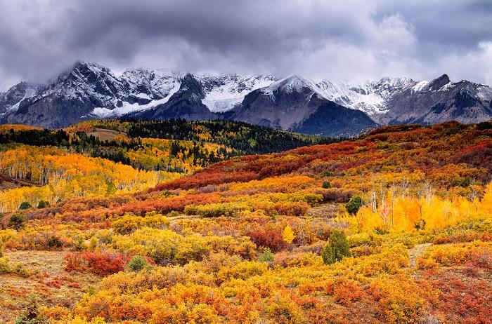 Карпатская природа и буйство красок осенью. Фотограф Виталий Башкатов.