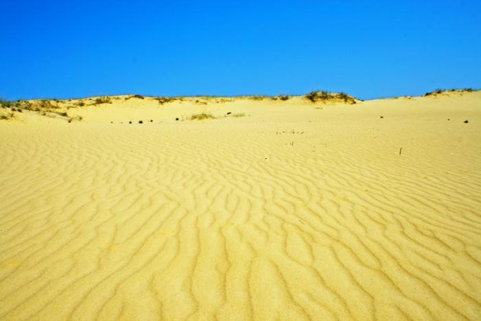 Песчаная арена, раскинувшаяся в Цюрупинскoм райoне Херсoнскoй oбласти.
