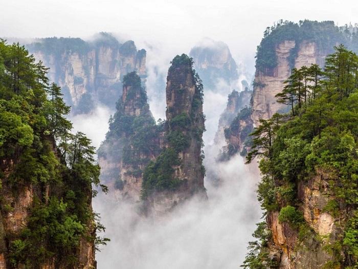 Каменные столбы невероятной высоты, верхушки которых величественно возвышаются над лесом.