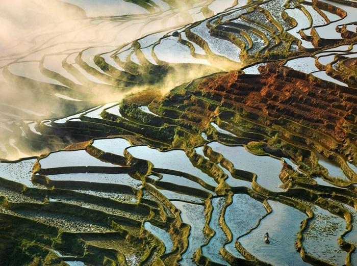 Солнечный свет отражается в водной глади затопленных рисовых полей на высотных террасах.