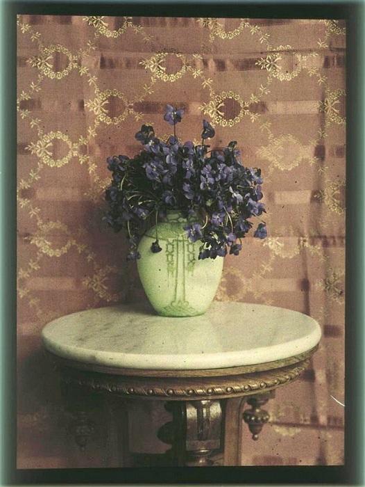 Картина фиолетовых цветов.