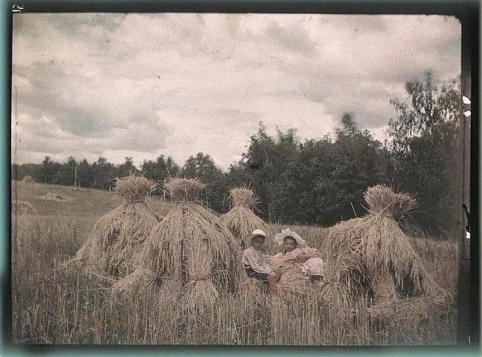 Детвора Козаковых во время сенокоса.