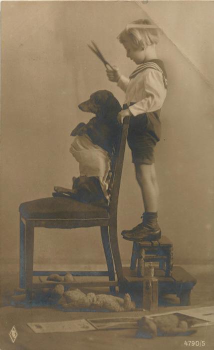 Преданный пес и юный матрос.