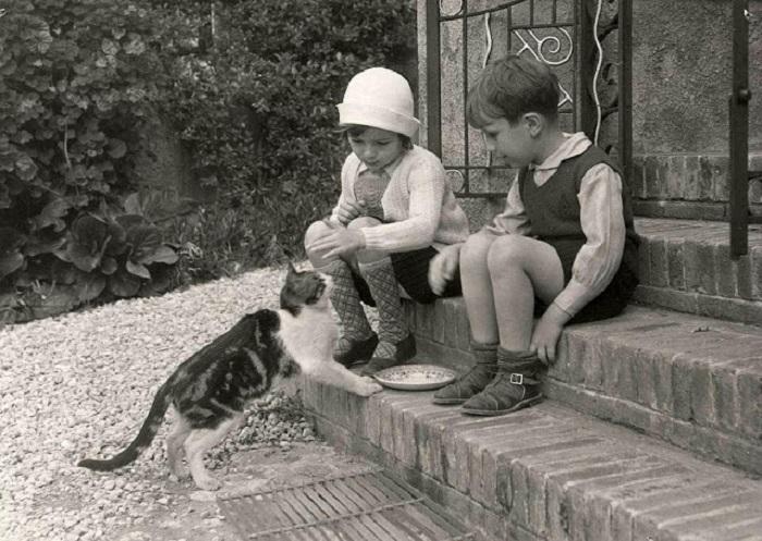 Заботливые детишки.