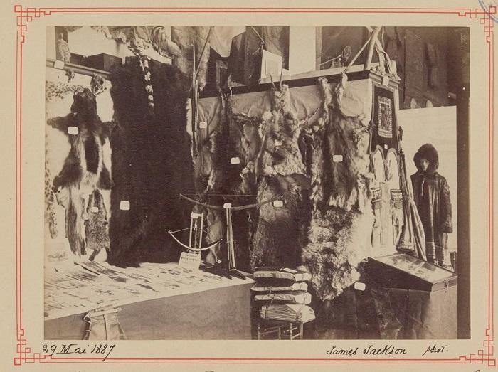 Шкуры животных, которые использовали для пошива тёплой одежды.