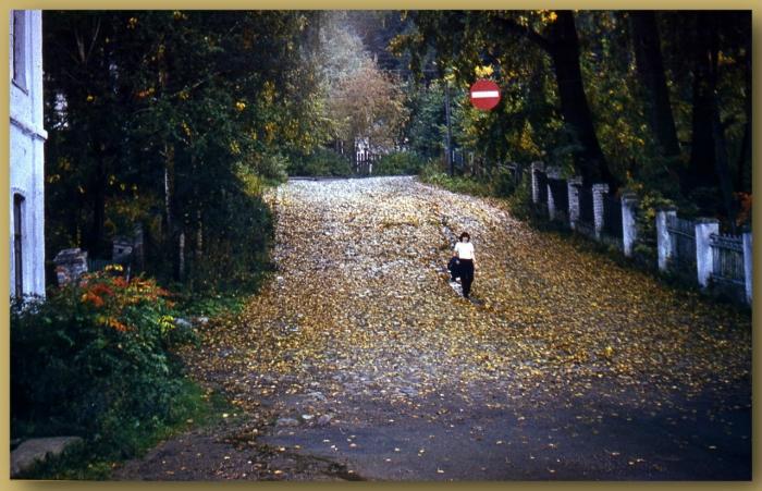 Уютный и живописный городок, расположен на правом берегу Волги, в устье речки Шохонки.