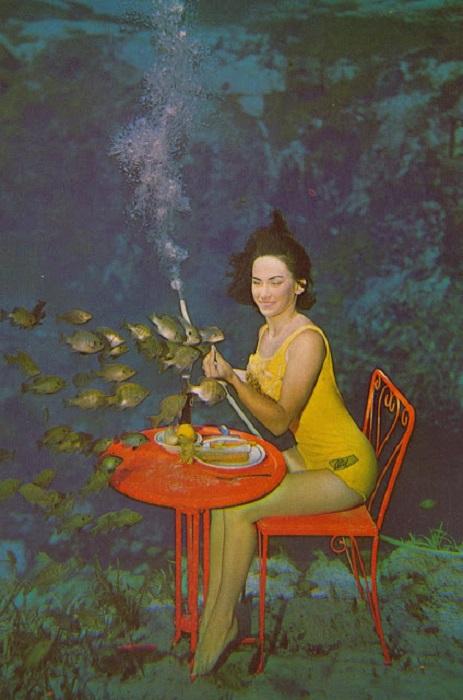 Обитатели аквариума были неотъемлемыми участниками представлений.